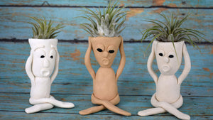 Scream Air Plant Holders
