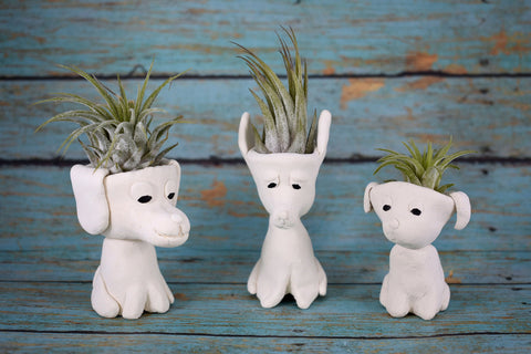 Puppy Dog Air Plant Holder