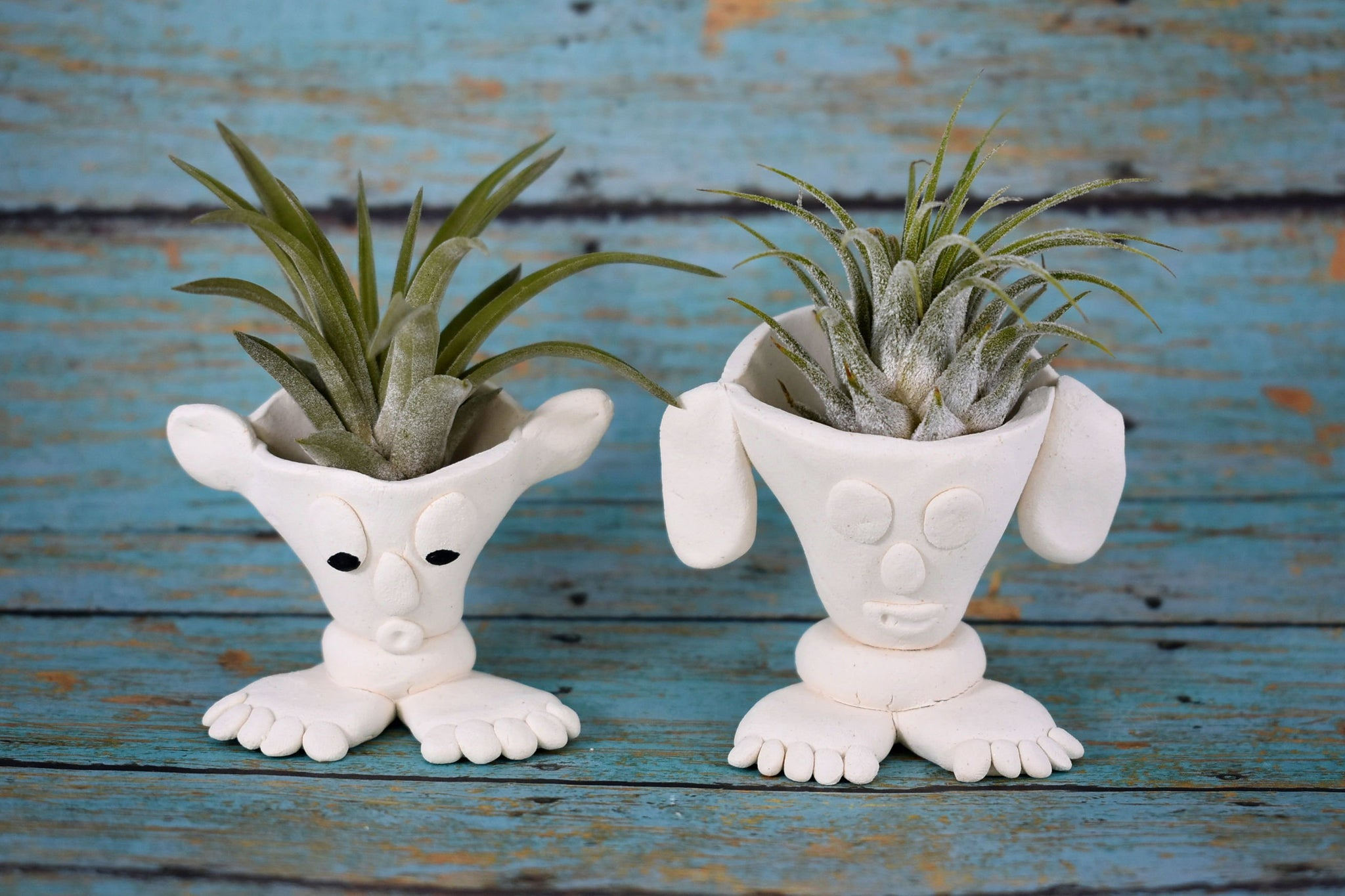 Bigfoot Air Plant Holder, vanilla