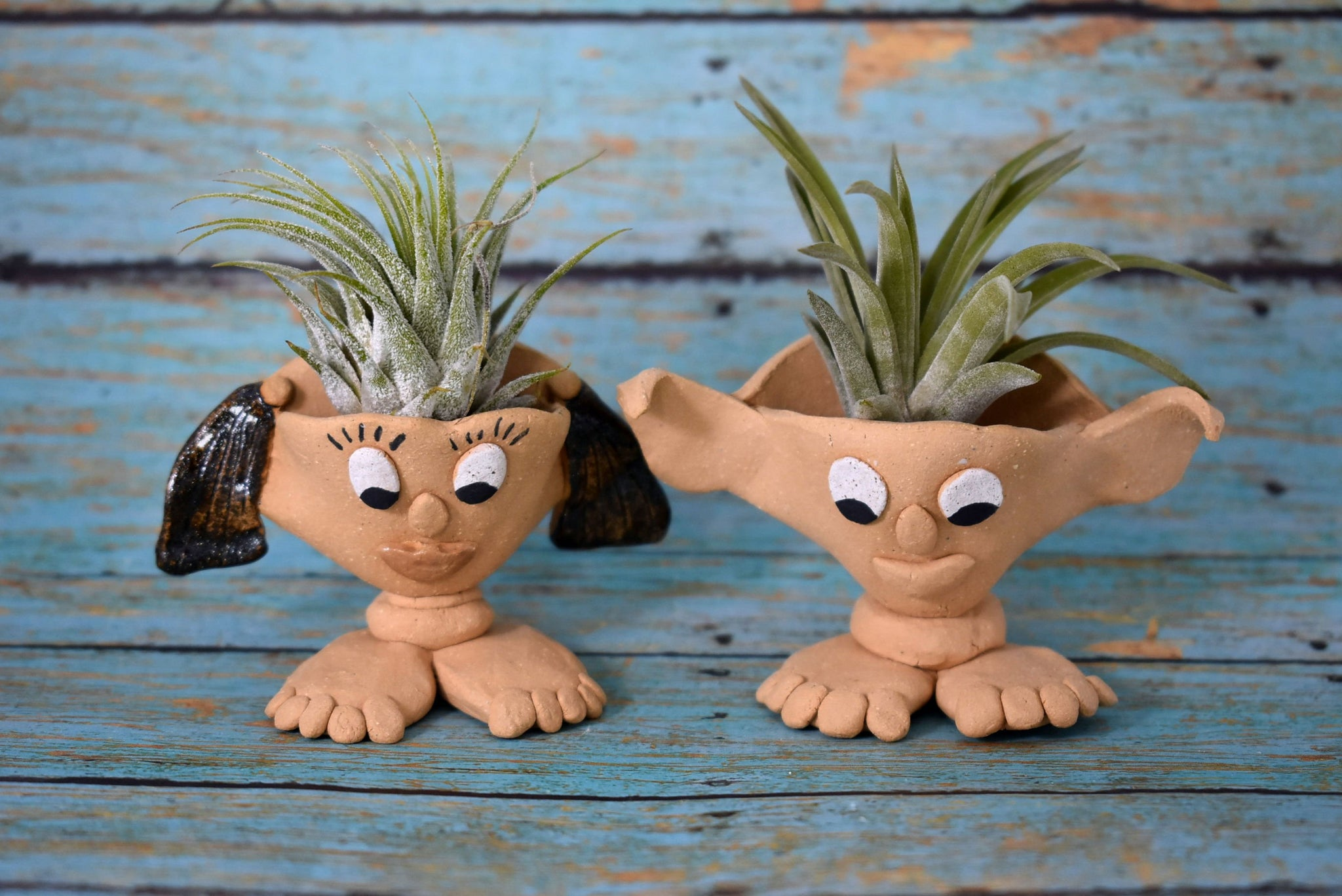 Bigfoot Air Plant Holder