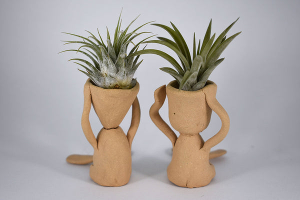 Screaming Guy air plant holder, tan