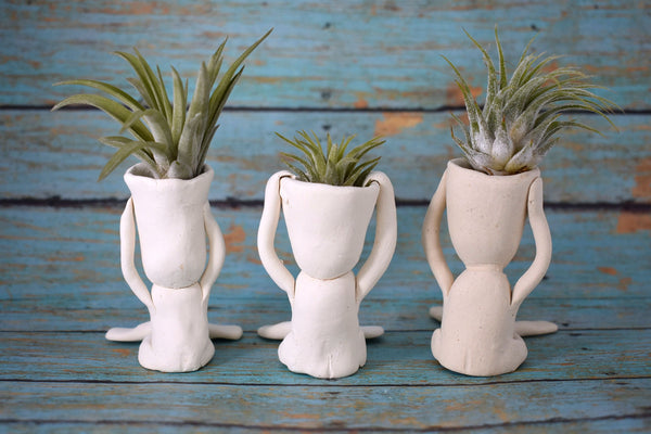 Screaming Guy air plant holder