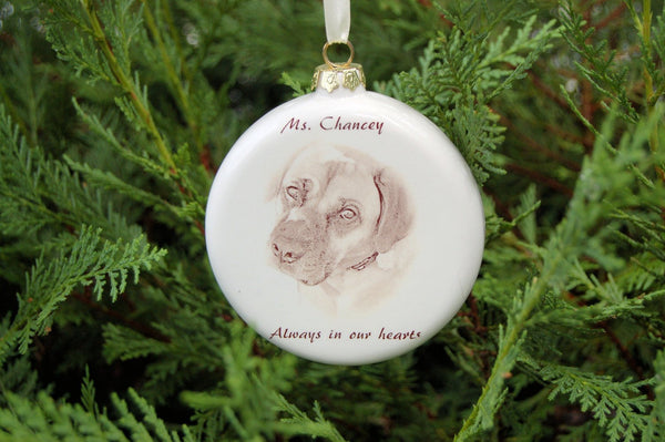 Pet Photo Ornament, 4 inch Round Ornament