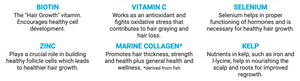 Follicle Fuel - 60 capsules