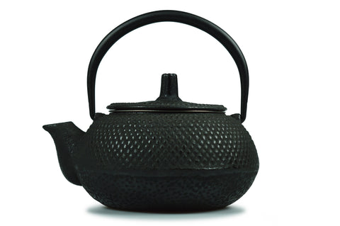 Small Chinese Cast Iron Teapot with Infuser