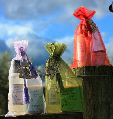 Gift Bag with Hand & Body Lotion and Soap