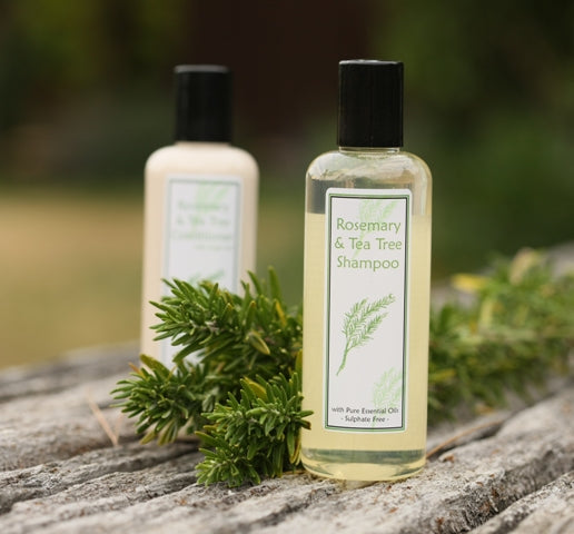 Rosemary & Tea Tree Shampoo