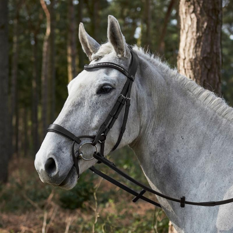 GFS Harmony Bridle with Rubber Grip Reins