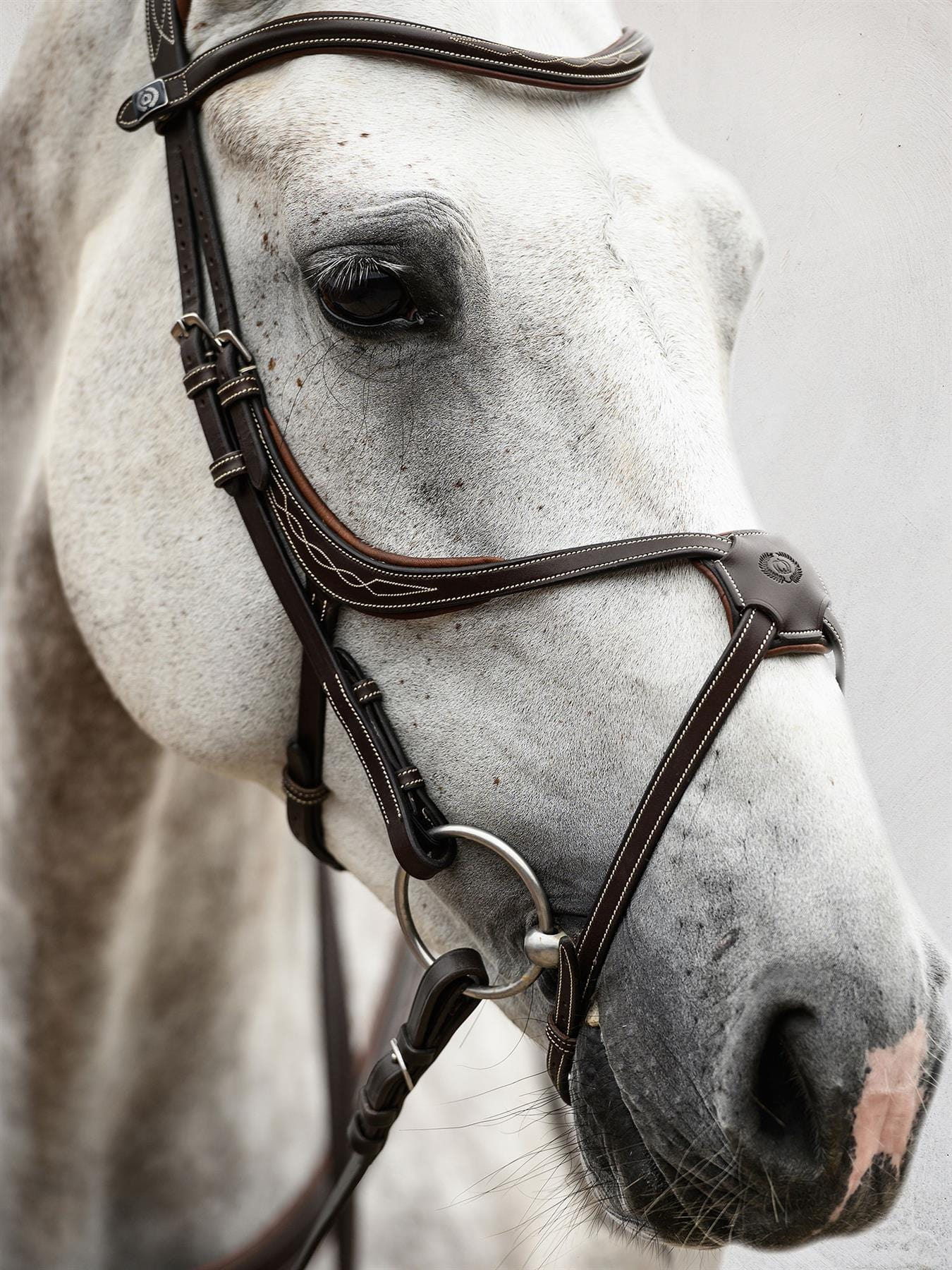 PS of Sweden Athens Limited Edition Grackle Bridle
