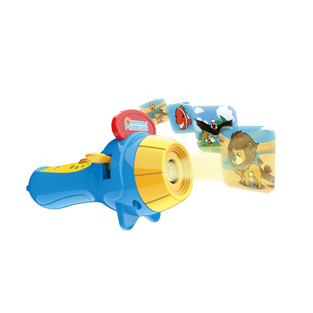 Projector Flashlight with Image Reels (4334546616366)