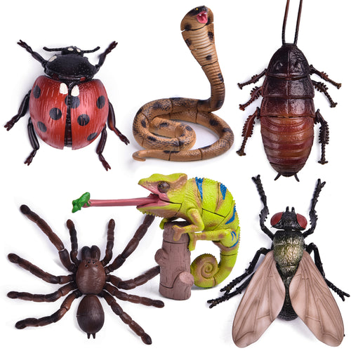 6 Pack Insect Figures 3D Puzzles, Kids Crafts for Birthday Party Favors, Kids Prizes, Goodie Bags Fillers (4601884737582)