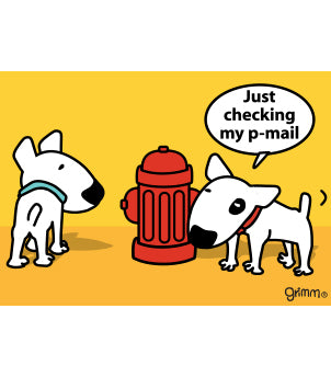 P-Mail Magnet