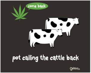 Pot Calling Cattle Magnet