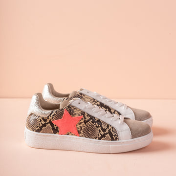 Requins Sun Stella Mix Clash/Fluo Trainers