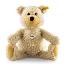 Load image into Gallery viewer, Steiff - Paddy Teddy bear