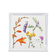 Load image into Gallery viewer, Holly Somerville - Set of six Atlantic Flora cards