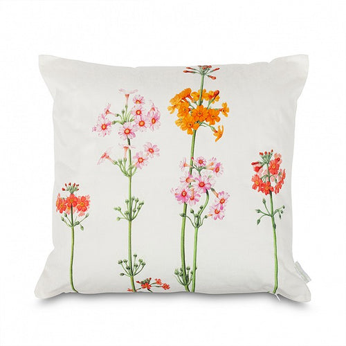 Holly Somerville - Candelabra Primula cushion