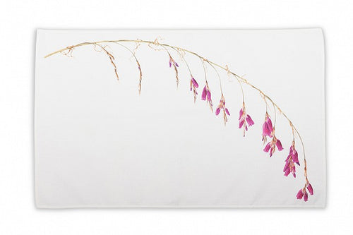Holly Somerville - Dierama Teatowel