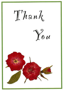 Pack of 4 Thank You (Roses - RP16d)