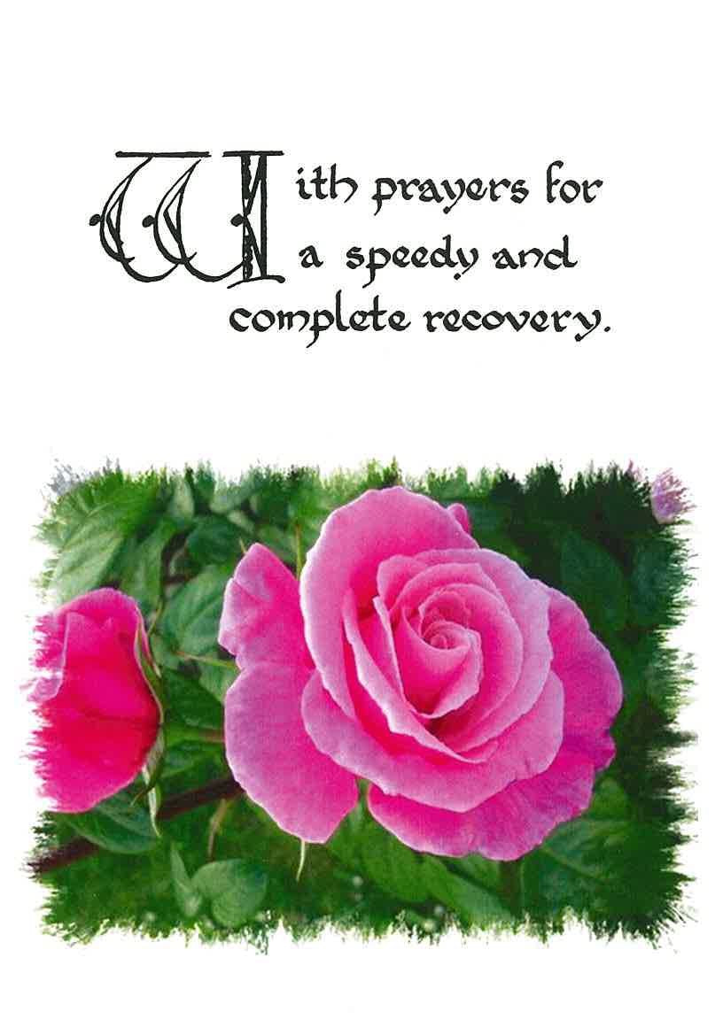 Pack of 4 Speedy recovery Attended Mass (Rose - RP55As)