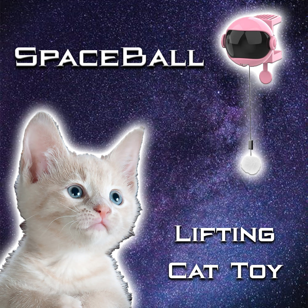 SpaceBall Lifting Cat Toy