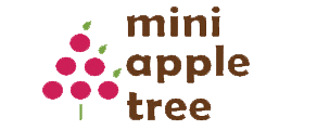 Mini Apple Tree