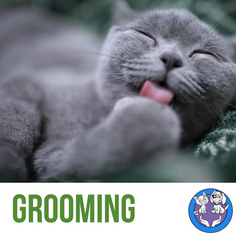 Natural Grooming Products