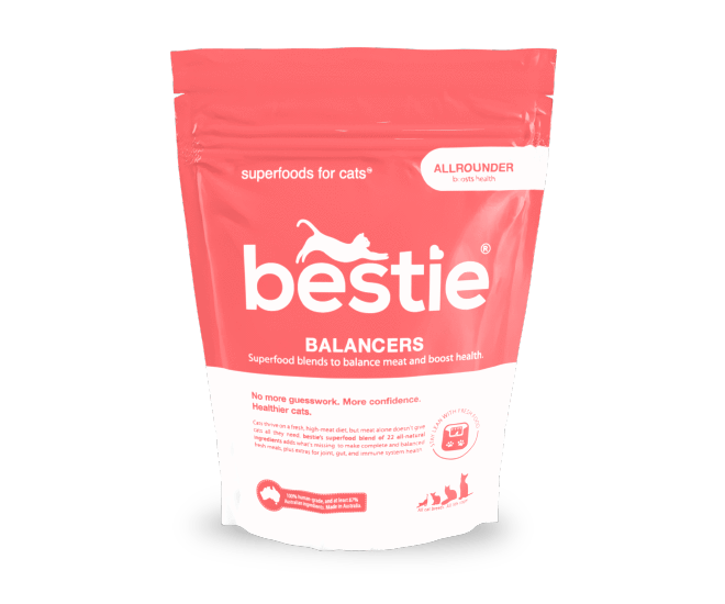 Bestie Balancer: the allrounder for Cats (350g)