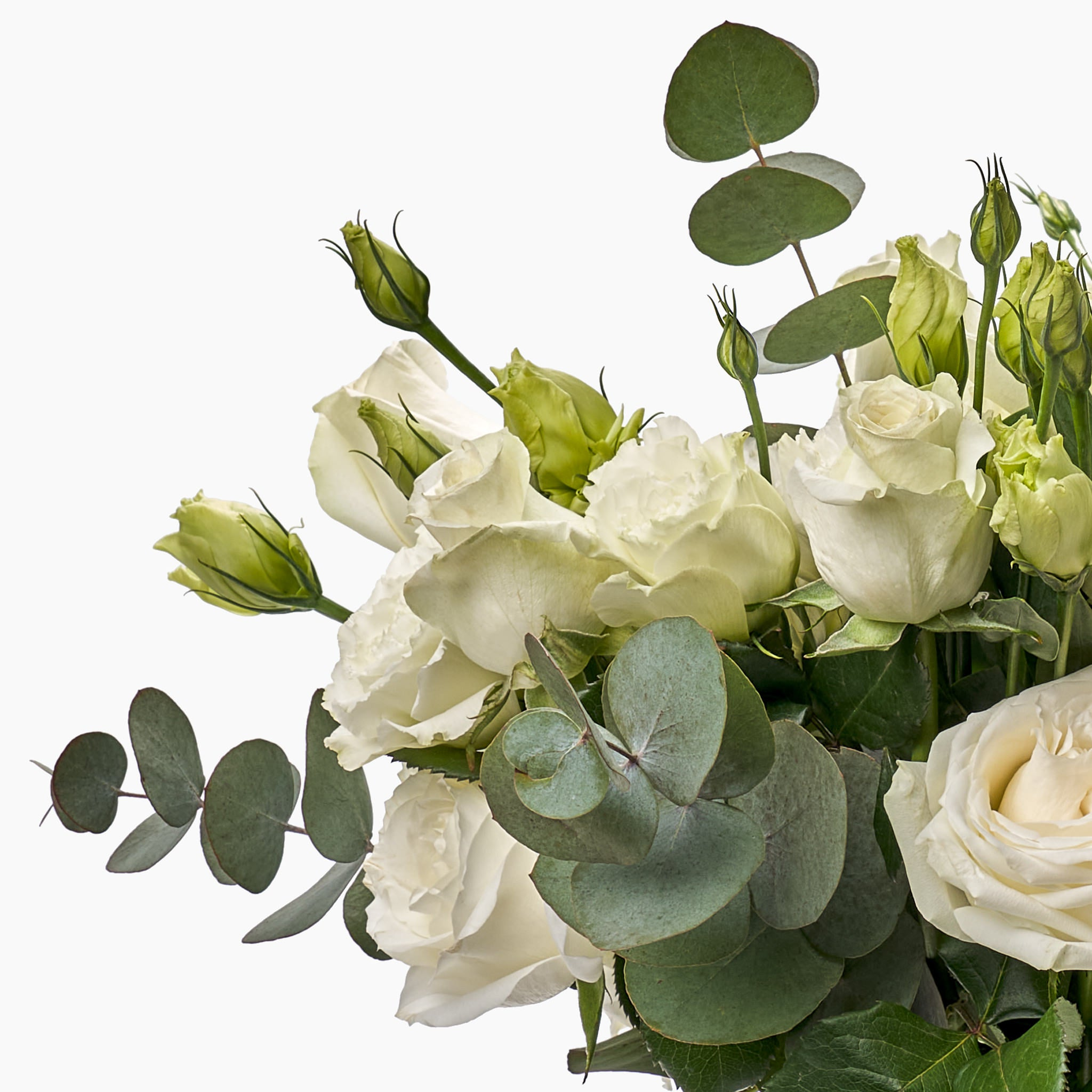 Photo of our Moondance flower arrangement including the white rose, lisianthus and pennygum. Julep offers flower delivery Johannesburg and flowers in a box.