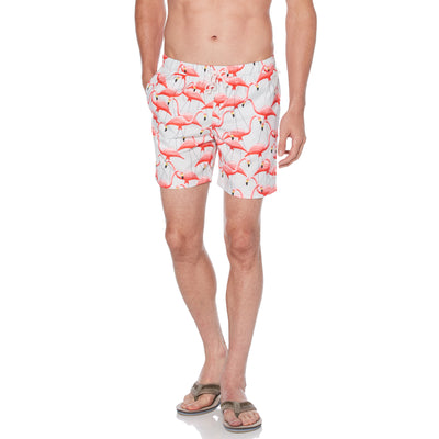 Packable Flamingo Print Swim Shorts In Ballad Blue
