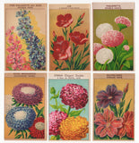 Old Seed Packet Labels Flowers