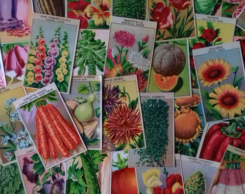 144 Vintage Seed Packet Labels Flower & Vegetable - simplyfrenchvintage
