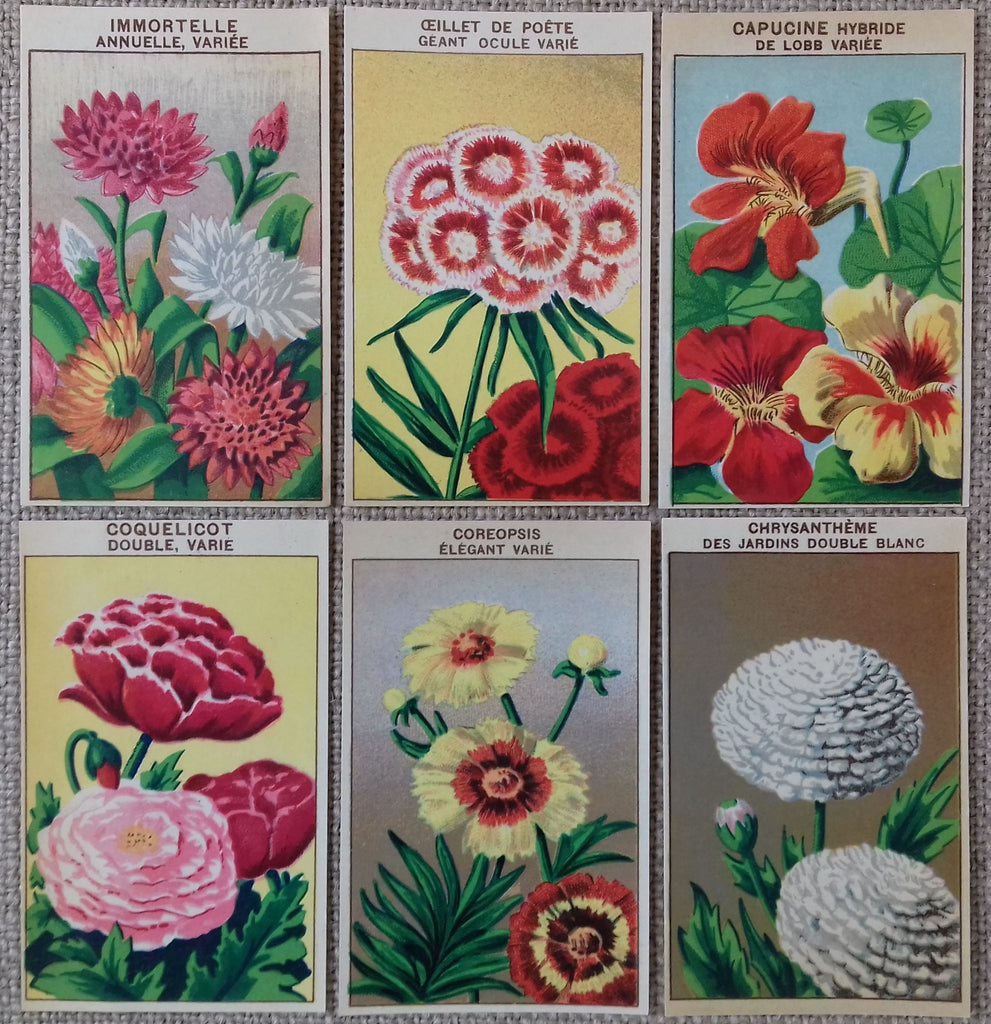 72 DIFFERENT Vintage French Flower Seed Packet Labels Genuine 1920/'s lithographs