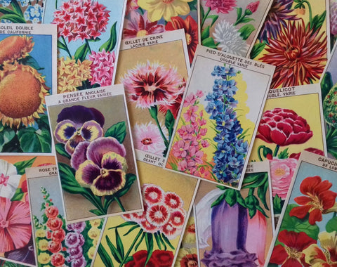 Antique Seed Packet Labels Flowers French 72 in set