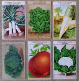 72 Antique Seed Packet Labels Vegetables - simplyfrenchvintage