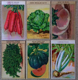 6 vintage vegetable prints that are all original color lithographs