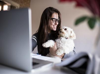 The Great Debate: 3 Reasons Your Workplace Should (or Shouldn't) Have Pets