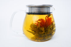 Blooming green tea flower in glass teapot