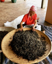 Load image into Gallery viewer, Thai farmer drying Assam leaves in Chiang Rai