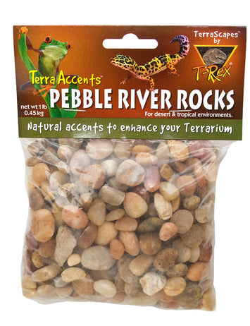 T-Rex Reptile Terrarium Decor -  Terra Accents Pebble River Rocks