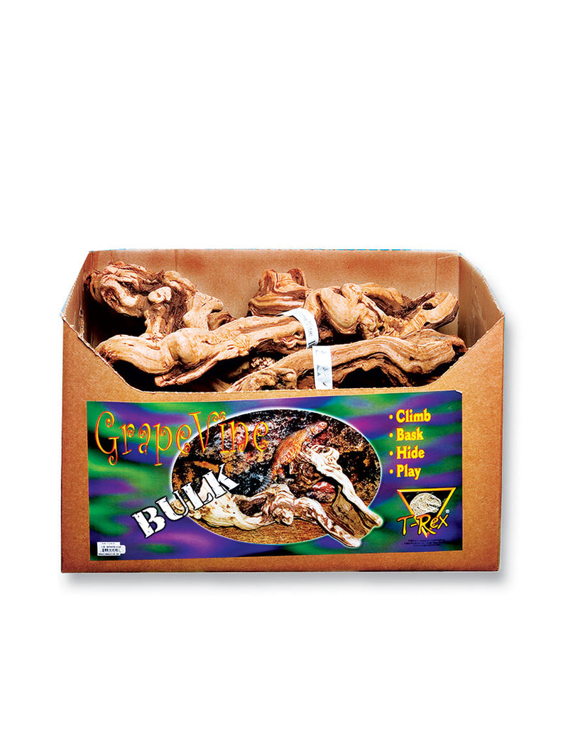 T-Rex Reptile Terrarium Decor - Grapevine Wood Branch - Bulk Box