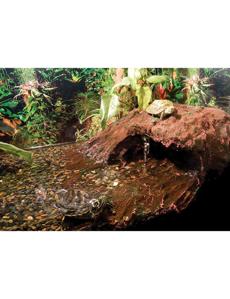 T-Rex Reptile Terrarium Decor - Turtle Beach - 20 Gallon