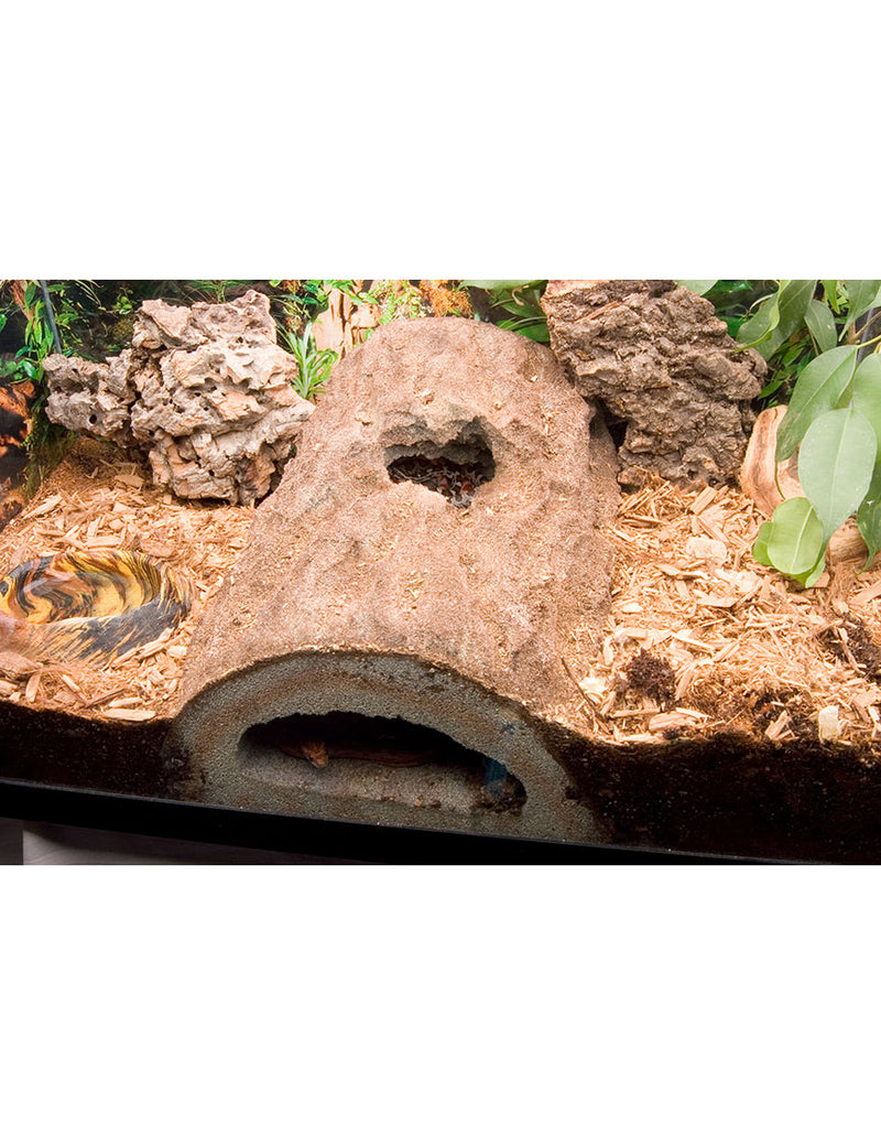 T Rex Reptile Terrarium Decor Rockview Caverns Hide T Rex Products