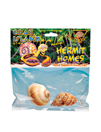 T-Rex Hermit Crab Home Medium Shell (2 pk)