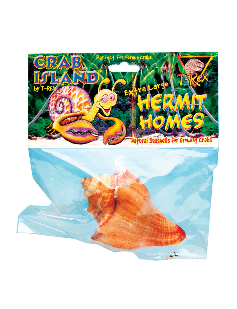 T-Rex Hermit Crab Home X-Large Shell