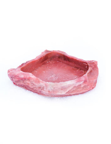 T-Rex Hermit Crab Accessory - Food & Water Dish Red Rock