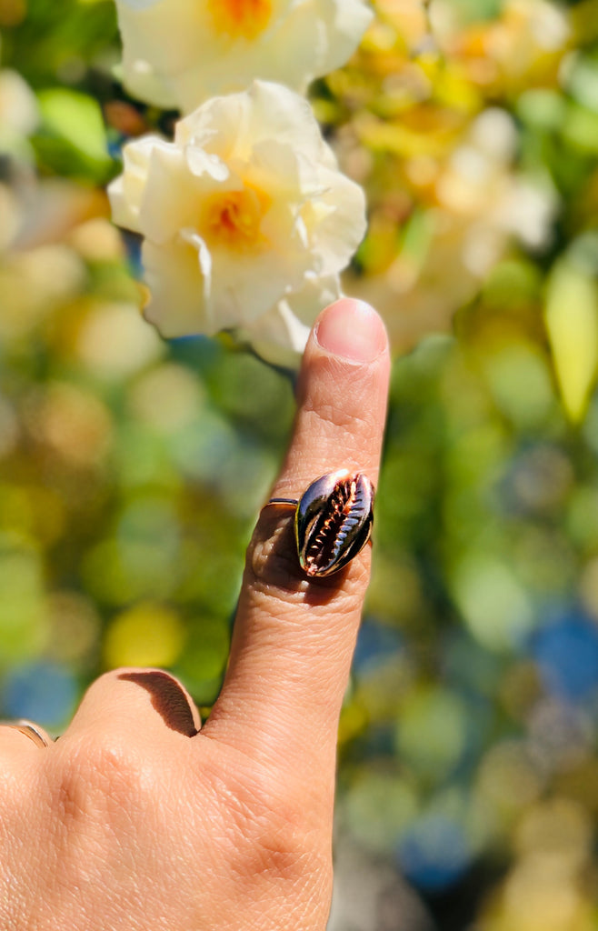 Golden Cowrie Shell Ring