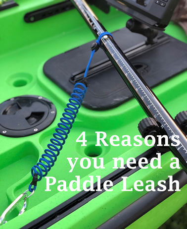 4 Reasons You Need A Paddle Leash