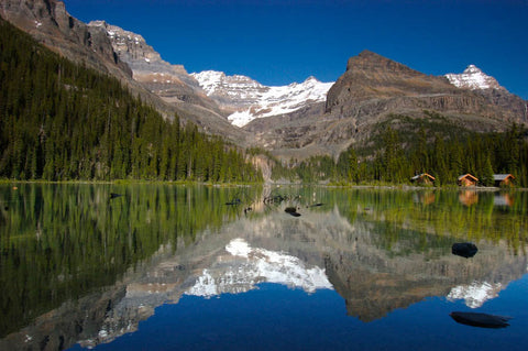 Lake O'Hara Reflection
