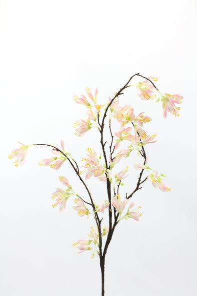 Magnolia Tree Spray Light Pink